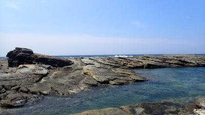 列車&バス旅/パンダと海と温泉と・白浜~紀伊日置のんびり4泊5日