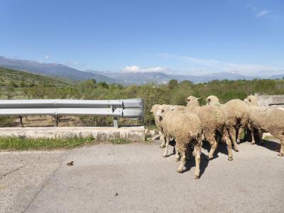 春の優雅なアブルッツォ州/モリーゼ州 古城と美しき村巡りの旅♪ Vol237(第9日) ☆Sulmonaから美しき村「Introdacqua」へ走る♪