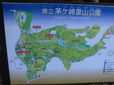 茅ヶ崎里山公園の風景