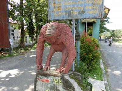 インドネシア(メダンからロンボクまで行く予定が脱水症状で入院。途中帰国の旅)2日目
