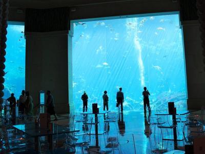 ドバイマリーナ夜景&アトランティス・ザ・パームで過ごす午前のひと時、カレイドスコープで朝食~ShuiQiスパ&フィットネス~ロストチェンバー水族館編【テンションMAX激アツResortドバイ】