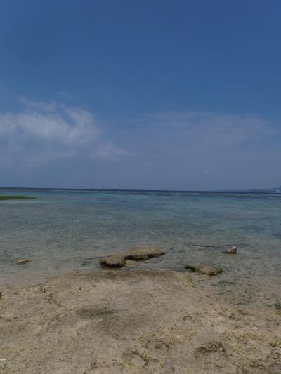 ようやくの沖縄<レンタカーの旅 その1>