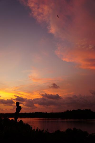 灼熱のスリランカ(23)ジェフリー・バワの理想郷ルヌガンガで手漕ぎボートで湖に遊び、ギャラリー・スイートに泊まりディナーを楽しむ。