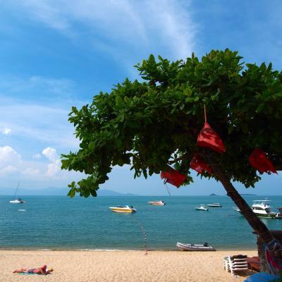 碧い海と南の島に住む猫たちを巡る旅 in Samui★2017 01 1日目 【名古屋⇒BKK⇒サムイ島】