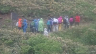 利尻・礼文島 花花ハイキング4日間(15) 礼文島 桃岩展望台のハイキングは行かず、駐車場で待機。