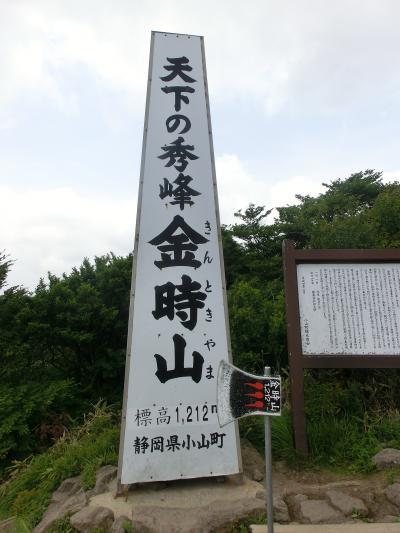 公時神社から登る金時山 ~ゆっくり登山~