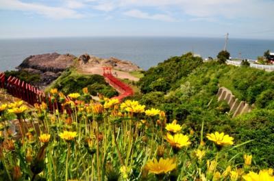 北長門海岸国定公園を巡る・・・元乃隅稲成神社、千畳敷、東後畑(ひがしうしろばた)の棚田など