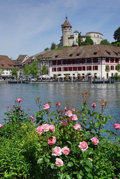 絶景を求めてスイスへの旅 <2>出窓と壁絵が美しいシャフハウゼンの街♪