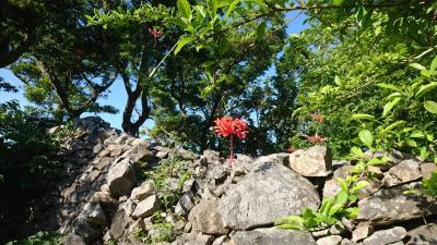 沖縄で世界遺産