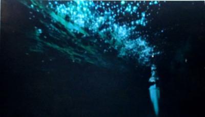 地底で瞬く星たち!ラピュタの世界が広がる「ワイトモ・ケイブ」