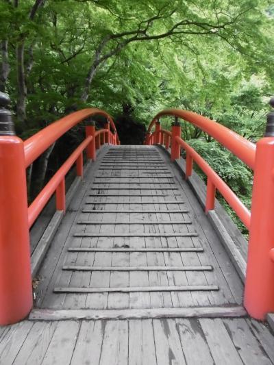 金山城跡~景風流(ケーブル)の宿~岩宿遺跡