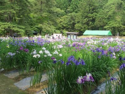 北海道・東北旅行最終日 平泉を訪ねる