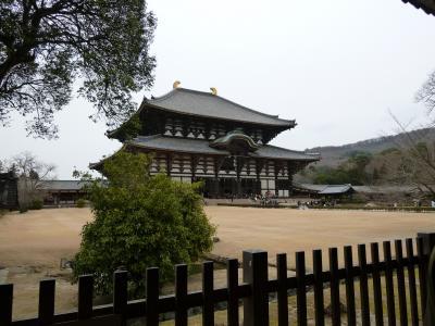 2011年 京都・奈良 おまけで大阪城 2日目
