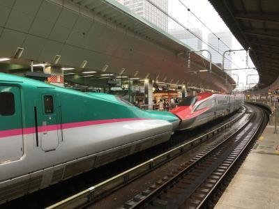 大人の休日倶楽部パスで新幹線乗り倒しの旅