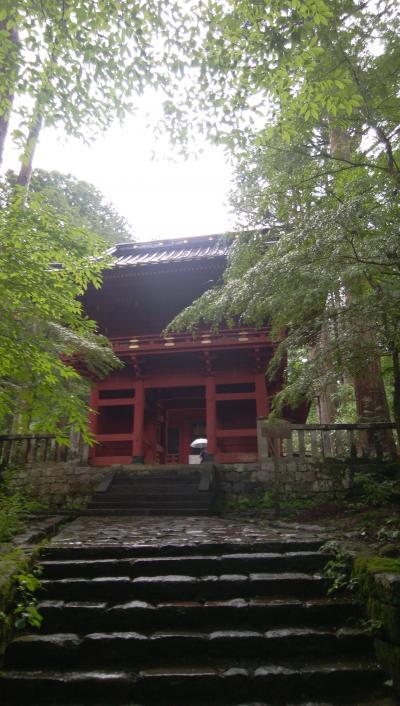 ヤマビルに要注意!梅雨時のハイキング(滝尾神社)①