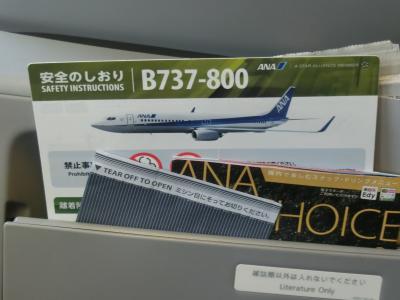 久々のANA機で飛ぶ目的地は、久々の岩国。の旅 ~帰京便は奮発してPREMIUM CLASSで?! NH 638便/地上編~
