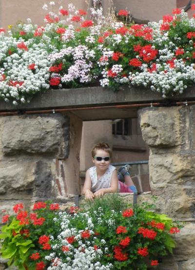 アルザス・ワイン街道を行く13 花の旅 エグイスハイム~ロウファッハ