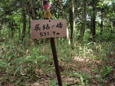 菅山寺に寄り呉枯ケ峰に登りました