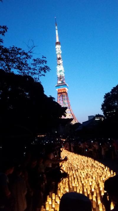 増上寺 キャンドルナイト