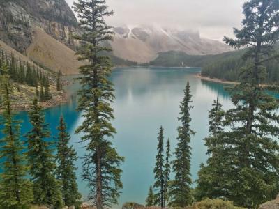 バンフ2日目はゆったり観光 ルイクルーズ、モレーン湖、ヨーホー国立公園ツアー&夜景ツアーへ