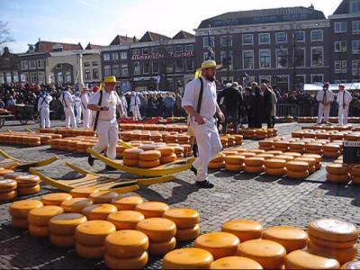 2017年 ベルギー、オランダの旅 ⑭アルクマール