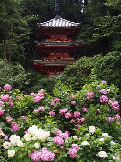 浄瑠璃寺と岩船寺