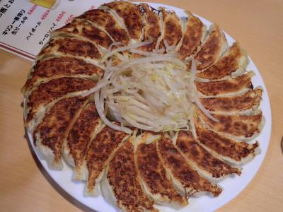 静岡グルメ旅 ~肉(ハンバーグ)と魚と餃子の食い倒れ~