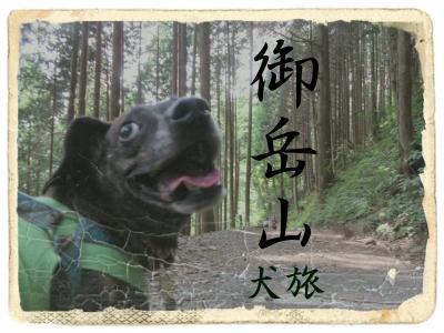 犬旅 ~御岳山~