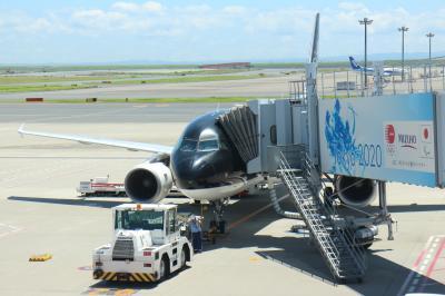 7G23/NH3823便、羽田→関西搭乗メモ。この区間、普通席ならスターフライヤーが快適。