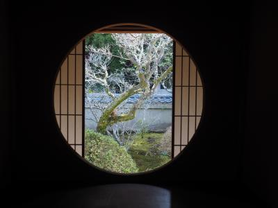 京都子守り旅行