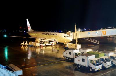 ぐるり鹿児島の旅 Part 5 - JAL 鹿児島→羽田