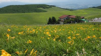 ニッコウキスゲが咲く高原へ!爽快なドライブルート・ビーナスライン