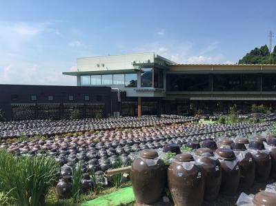 霧島市福山で黒酢の壺畑を見に行こう!2017年鹿児島、宮崎の旅① 桷志田さんと壺畑さんを比較!