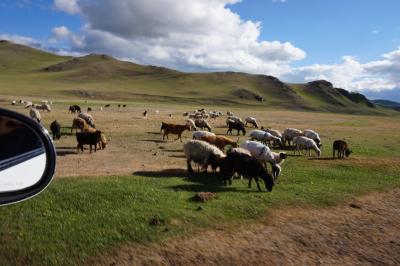 煌めきのモンゴル大自然の旅・・・・ブルドとカラコルム