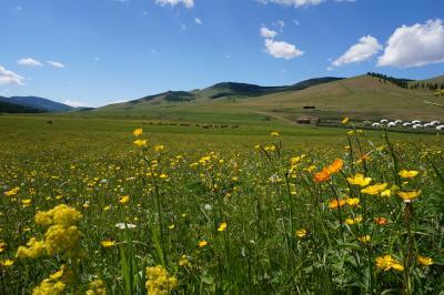 煌めきのモンゴル大自然の旅.....ツェンケル温泉とウギー湖