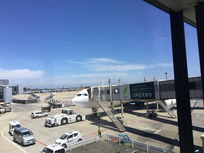 2017.7 スリランカ旅行記①空港~ジェットウィングラグーン泊