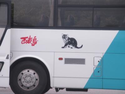 猫探し【八重山に猫はいない?(No cat in Iriomote Is?)編】