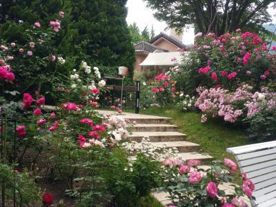 薔薇を楽しむ会へ行ってきたよ~河口湖オルゴールの森