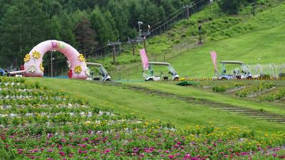 桃の買い出し(18) 富士見高原リゾートで遊ぶ(3) 花の里カートロマンスエリア 帰り編。