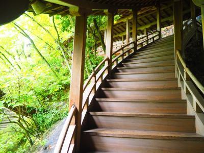 永観堂禅林寺 雨が好きになる京都のお寺part2