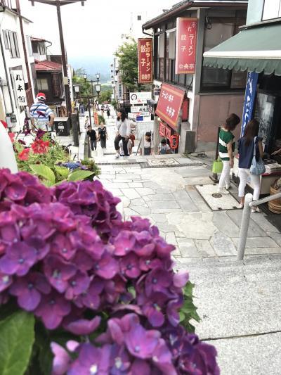 【2017・8】晩夏の群馬日帰り旅~水沢うどんと伊香保温泉石段街散策