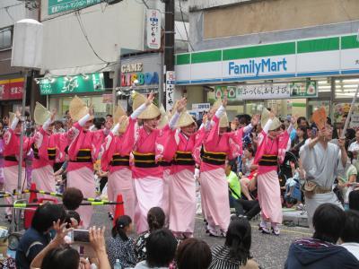 2017 関東三大阿波踊り 第41回神奈川大和阿波踊り