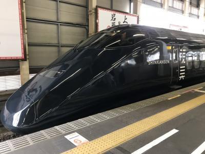 新潟(前編)~現美新幹線で新潟へ、宿泊はANAクラウンプラザホテル新潟~