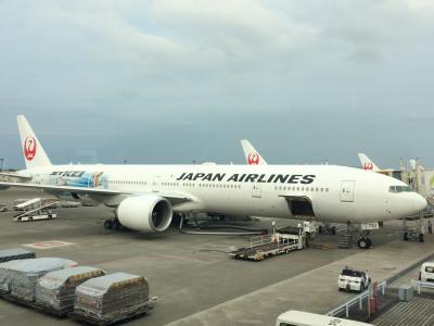 JAL特典航空券で行くニューヨーク 40日間滞在記  【1】
