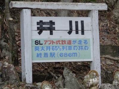 終点井川まで