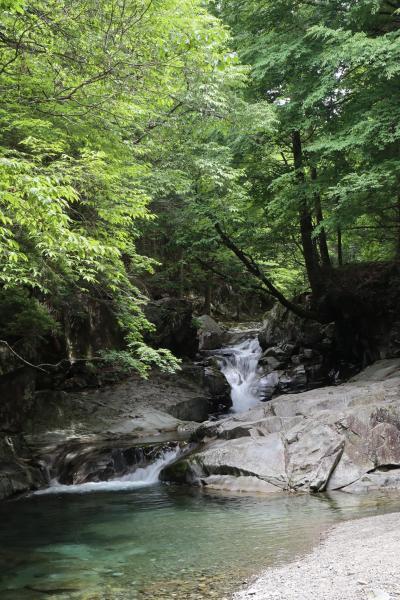 洞川(どろがわ)自然研究路ハイキング