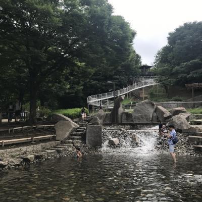 2017/7 東京北区 清水坂公園の水遊び風景