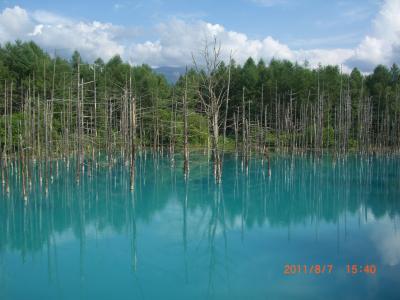 北海道の大自然 ひまわり畑、層雲峡、旭岳、青い池