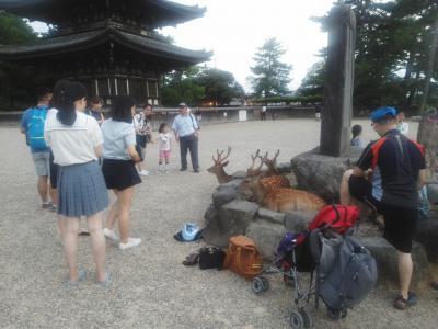 阿蘇美忍、5都物語~♪(^ー^)奈良公園周辺~!
