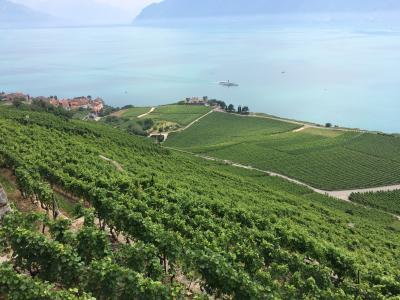 夏のスイス絶景を巡る旅(Vol.1 French Part)